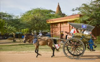Bagan Escape - 4 Days